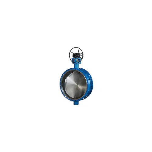 Clearance Type Butterfly Valve General
